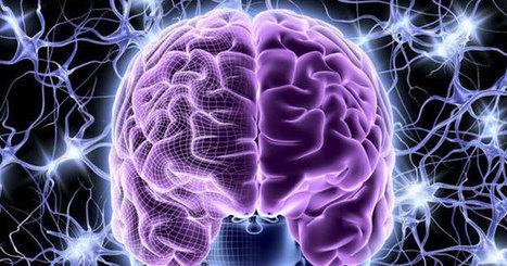 En 2045, l'homme pourra numériser les informations de son cerveau | Innovation et sérendipité | Scoop.it