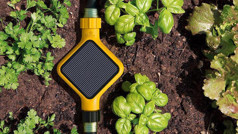Give Your Green Thumb A Cyborg Update With This Garden Kit | CEO's Almanac | Scoop.it