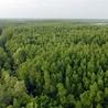 Economie et biodiversité