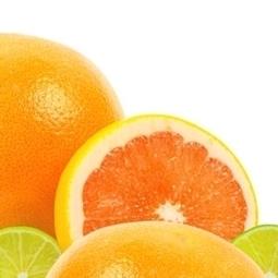 Une fin d'été vitaminée... 25 recettes aux agrumes   Carpediem, art de vivre et plaisir des sens   Scoop.it