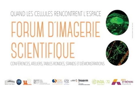 INRA - Forum d'imagerie scientifique lundi 13 février à Dijon | Variétés entomologiques | Scoop.it