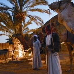 Bedouin BBQ in the Desert - Things to do in Egypt | Special Tours,Packages and Programs | Scoop.it