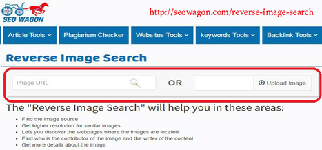 Reverse Image Search: Finding sensible pictures