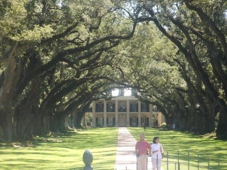 the oaks | Photo | Oak Alley Plantation: Things to see! | Scoop.it