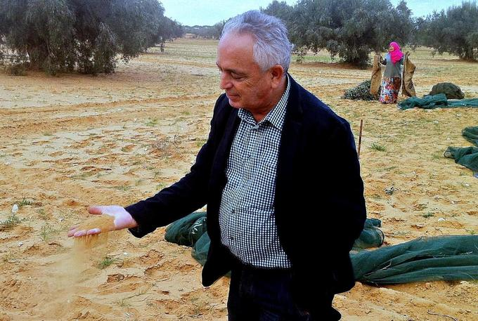 Revolution, Hope and Tunisian Olive Oil