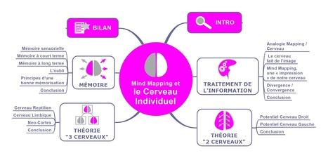 [e-Book] Notre cerveau et le Mind Mapping - Le Blog du Management Visuel | Representando el conocimiento | Scoop.it