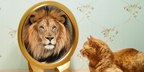 The Surprising Benefits Of Self-Deception | Wellspring News -- drink from the well! | Scoop.it