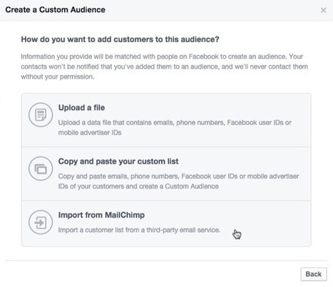Set Up a Facebook Custom Audience With Your MailChimp List | Email Marketing Tips | Scoop.it