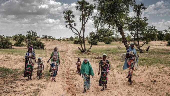 Au Niger, les populations rurales en première ligne face au réchauffement climatique