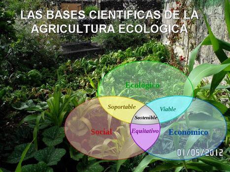 LAS BASES CIENTIFICAS DE LA AGRICULTURA ECOLOGICA | Agricultura ecológica y tintes naturales | Scoop.it