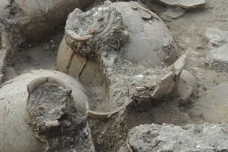 What 3,700-Year-Old Wine Tasted Like | Foodie | Scoop.it
