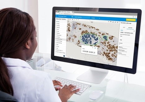 Proscia Pathology Cloud Now with New Cancer Image Analysis Tools | | Social Media, TIC y Salud | Scoop.it