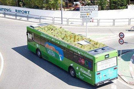 « Mueverte en verde »: les bus madrilènes bientôt équipés de toits végétalisés ! | Lumières de la Ville | Voyages et Tourisme | Scoop.it