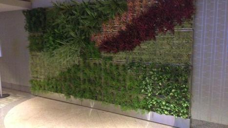 Downtown Honolulu's Pacific Guardian Center installs living walls - Pacific Business News | Vertical Farm - Food Factory | Scoop.it