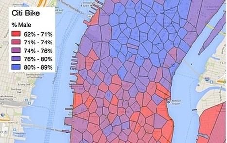 Graphing New Yorkers' Lives Through the Open Data Portal | visual data | Scoop.it
