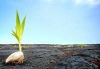 Pushing Through without PushingAway | Leadership counts | Scoop.it