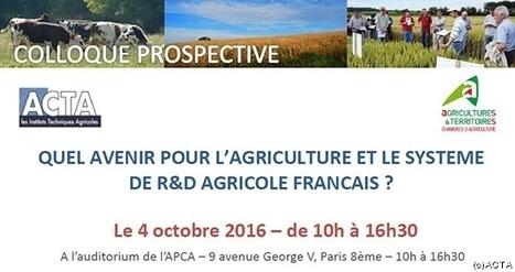 Colloque Prospective : Quel avenir pour l'agriculture et le système de R&D agricole français ? | AGRONOMIE VEGETAL | Scoop.it