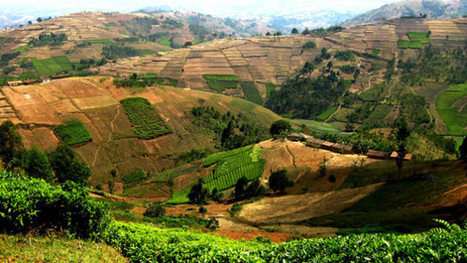 10 ways donors can support African governments on rural land rights | Food & Nutrition Security in East Africa | Scoop.it