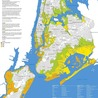 Mapping NYC hurricane