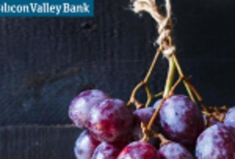 The State Of the US Wine Industry: Silicon Valley Bank's Report | Vitabella Wine Daily Gossip | Scoop.it
