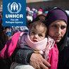 UNHCR World Refugee Day