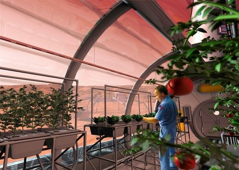 Farming on The Moon & Mars | Off Grid World | Cultivos Hidropónicos | Scoop.it