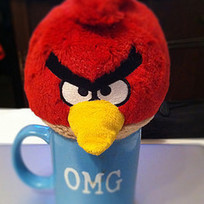 What Can Angry Birds Teach Us About Universal Design for Instruction? | Learning, Teaching & Leading Today | Scoop.it
