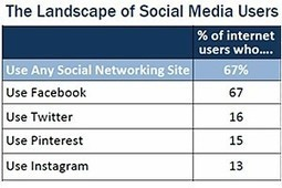 Social Network Demographics: Twitter, Pinterest, Instagram, Facebook | Pinterest | Scoop.it