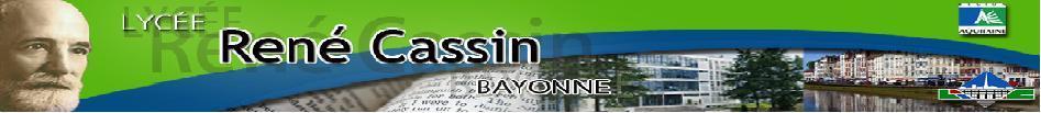 Les élèves du lycée Cassin de Bayonne