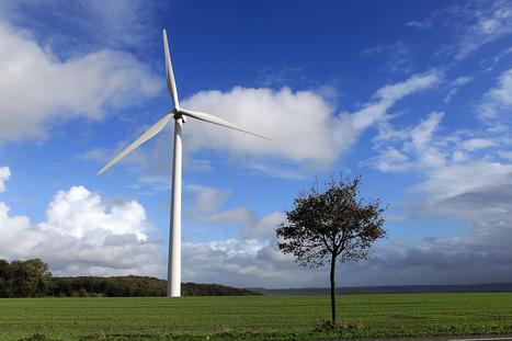 """L'éolien en quête d'un second souffle dans le Nord - Pas-de-Calais (2/2)   """"Emplois verts et éco-activités""""   Scoop.it"""