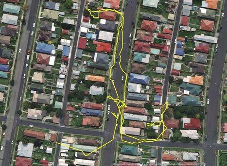 Des chats équipés de GPS pour capturer tous leurs déplacements nocturnes - La boite verte   barcelona mix-web   Scoop.it