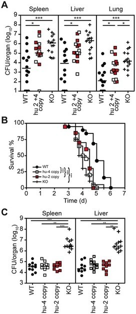 Humanized TLR4/MD-2 Mice Reveal LPS Recognition Differentially Impacts Susceptibility to Yersinia pestis and Salmonella enterica | Host Cell & Pathogen Interactions | Scoop.it