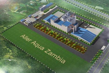 09/01/2017: Aller Aqua Group starts construction of the new factory in Zambia | Global Aquaculture News & Events | Scoop.it