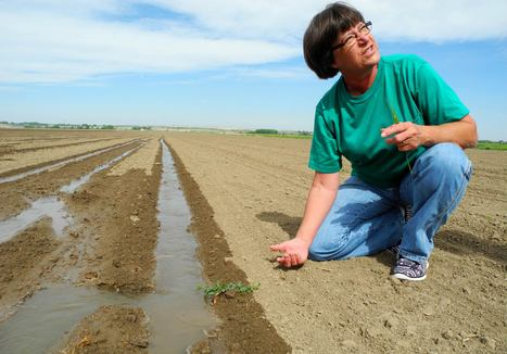 Drier than the Dust Bowl: waiting for relief in rural America | Food issues | Scoop.it
