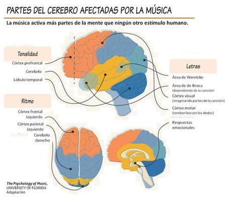 Los efectos de la música en nuestro cuerpo según la ciencia   NeuroPsicoEducación al Día   Scoop.it