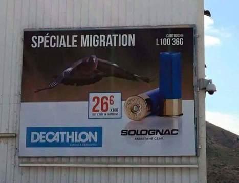Immigration: une affiche de Decathlon crée la polémique | Crise de com' | Scoop.it
