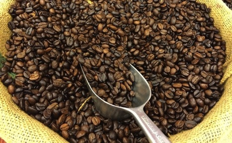 Our Guide to Buying Ethical Coffee... | Coffee News | Scoop.it