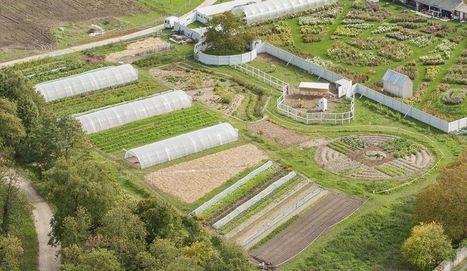 Pour un autre monde agricole | Des nouvelles de la 3ème révolution industrielle | Scoop.it