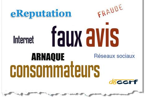 Faut-il Mettre des Faux Avis-Clients sur son Site ? | WebZine E-Commerce &  E-Marketing - Alexandre Kuhn | Scoop.it