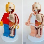 Jason Freeny's Giant Dissected Lego Men | I wish I'd thought of that | Scoop.it