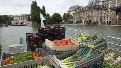 Mode, bière, légumes made in Paris   Avoir du savoir ville durable   Scoop.it