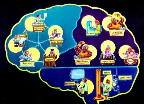 How early social deprivation impairs long-term cognitive function   EducateMe   Scoop.it