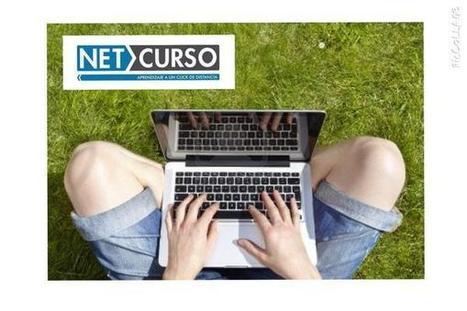 NetCurso sur Twitter | Estilos de aprendizaje | Scoop.it