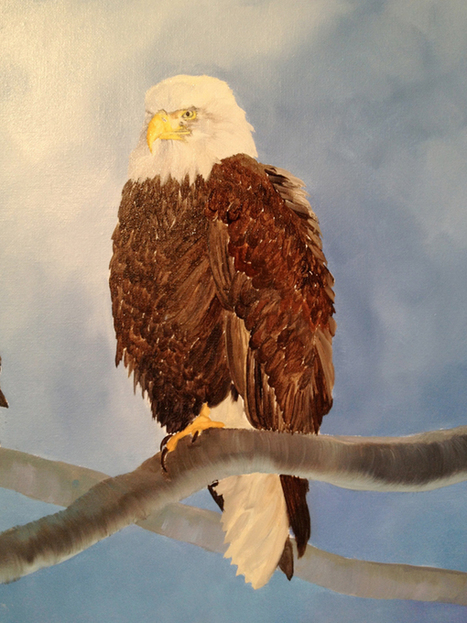 How do you...Paint Feathers? | Wildlife Paintings by: Laura Curtin | Cool Happenings | Scoop.it