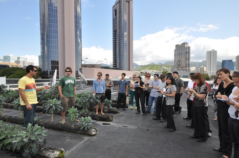 Happy Earth Day 2013! | Sustainable Urban Agriculture | Scoop.it