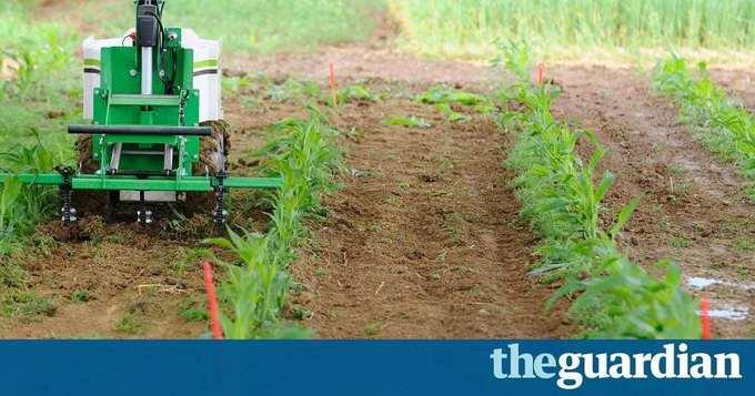 Miniature robots could cut pesticide use on farms in future