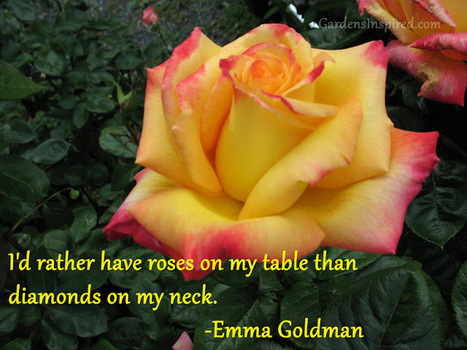 Quote by Emma Goldman | The Muse | Scoop.it