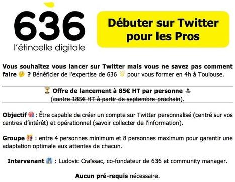 Twitter   You  1   La lettre de Toulouse   Scoop.it 57a0887f8582