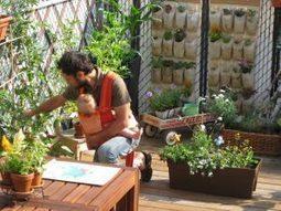 Garderie Le jardin urbain : l'agriculture urbaine pour les tout-petits | Agriculture urbaine, architecture et urbanisme durable | Scoop.it