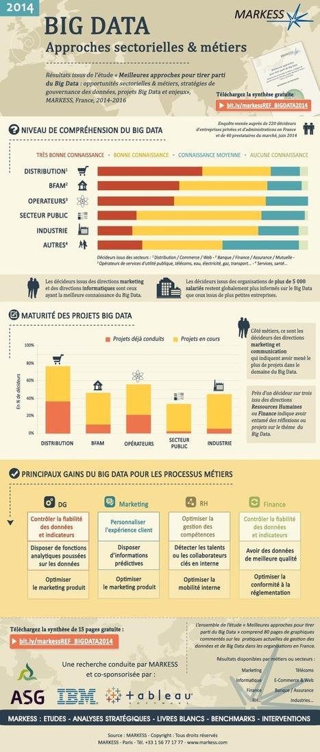 Infographie Big Data France 2014 - approches sectorielles & métiers - MARKESS   Profession chef de produit logiciel informatique   Scoop.it